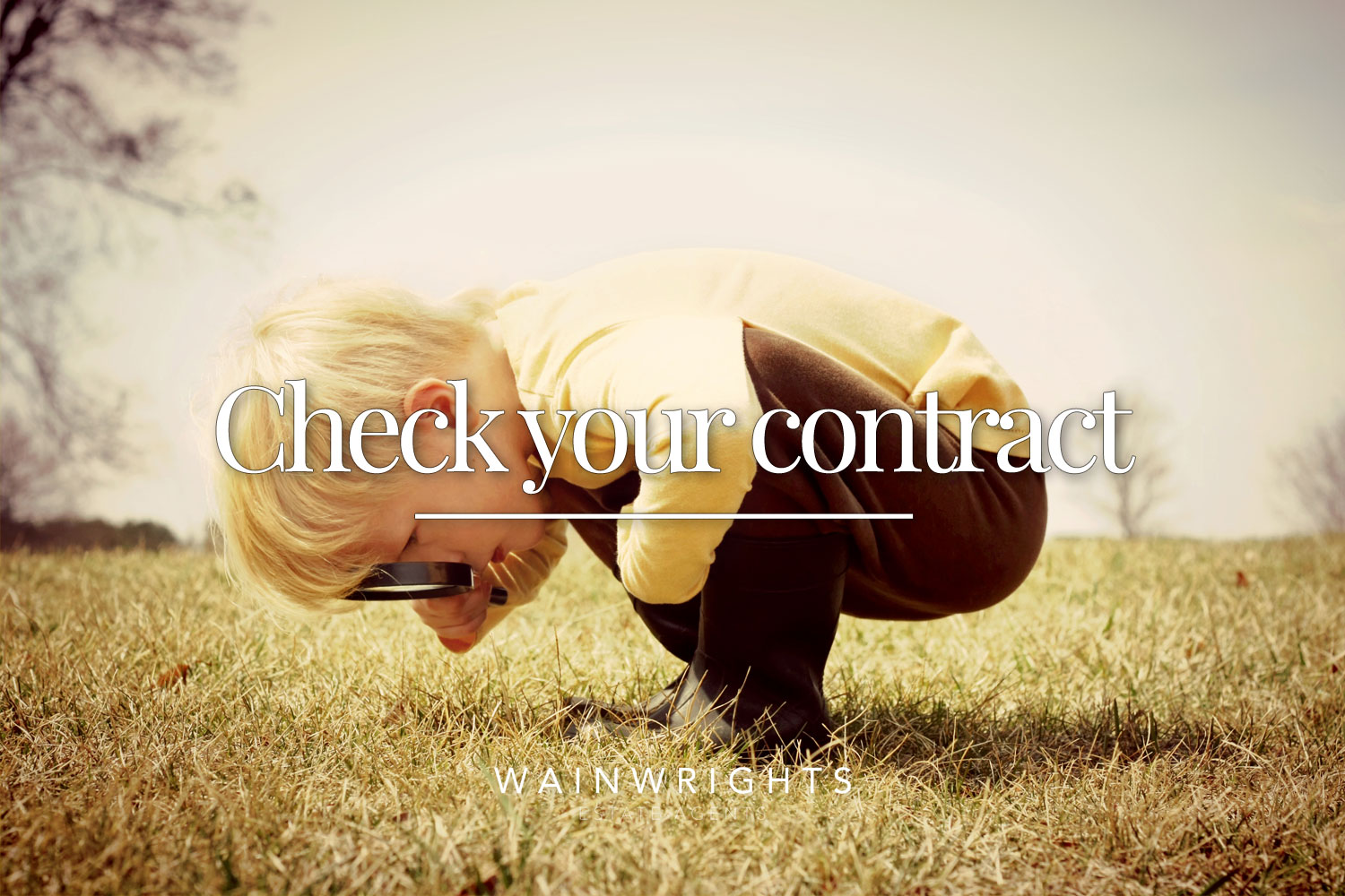 check-your-contract-