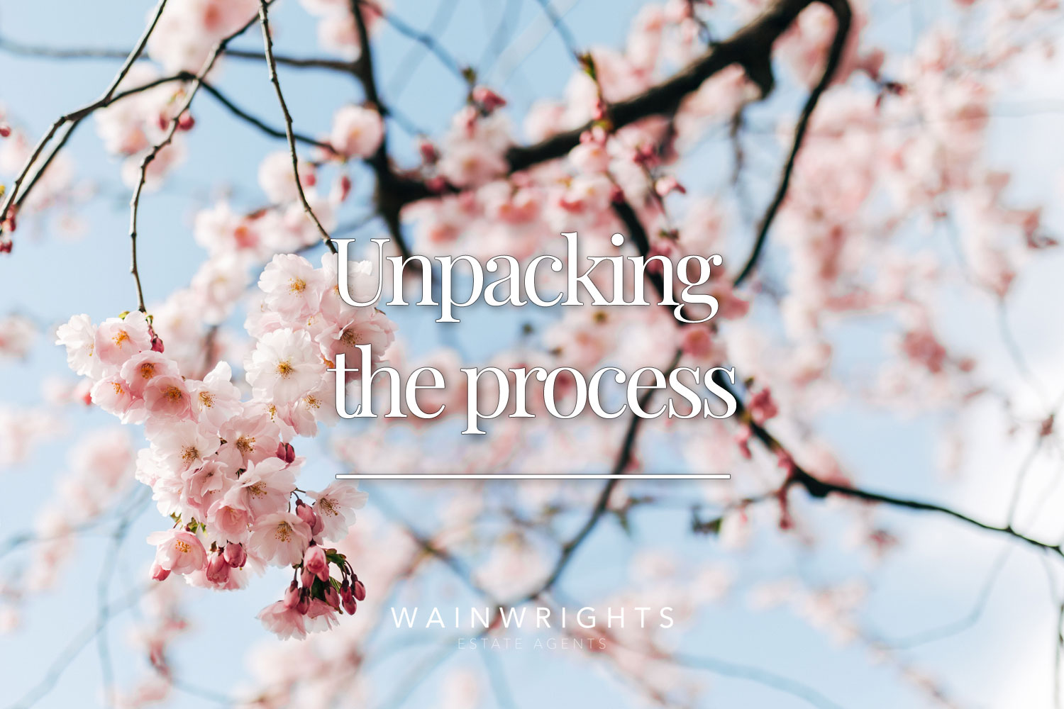 Unpacking-the-process
